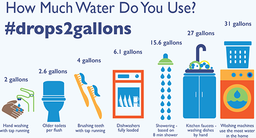 How much water do you Use
