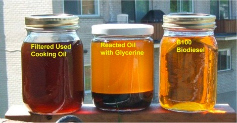 Bottled Oil