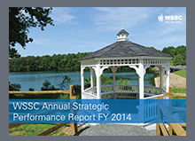 FY 2014 Annual Strategic Performance Report